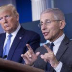 Ron Paul says Fauci needs to be removed: 'If not by Trump, then by the American people'