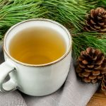 PINE TEA: Possible Antidote for Spike Protein Transmission